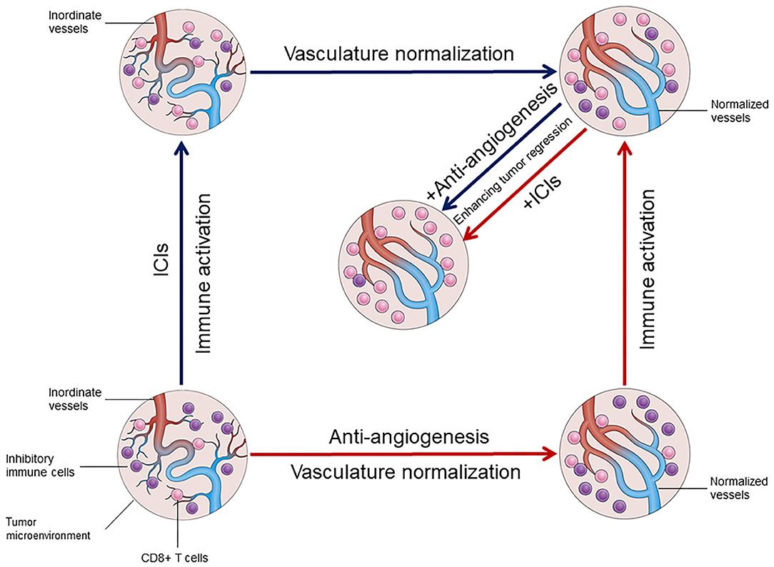 Therapeutic application of anti-angiogenic nanomaterials
