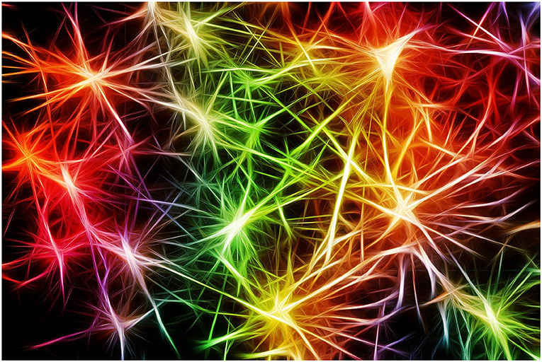Figure 3 - Many synapses communicate within the brain.
