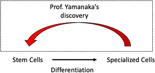 Figure 2 - Shinya Yamanaka won the Nobel Prize in 2012 for his work on iPSCs.