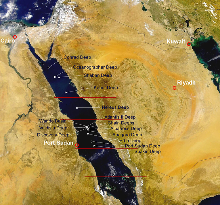 Figure 1 - Map of the Red Sea showing the locations of the main deep-sea brines.