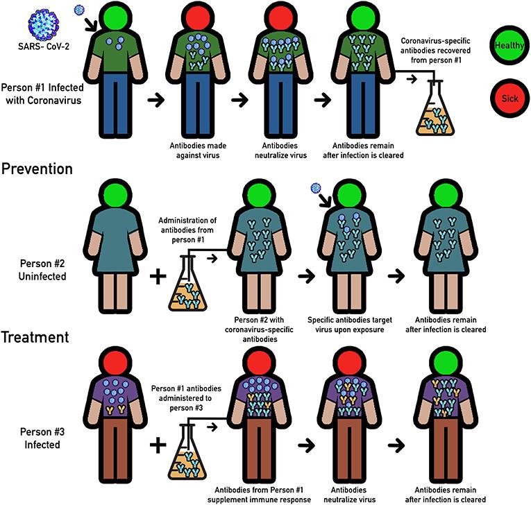 Figure 1 - Convalescent plasma therapy.