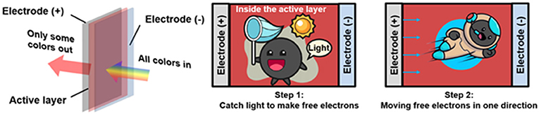 Figure 2 - See-through solar windows contain an active layer sandwiched between two electrodes.