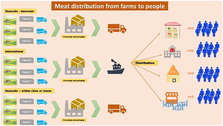 Figure 2 - The food supply system in America is complex.