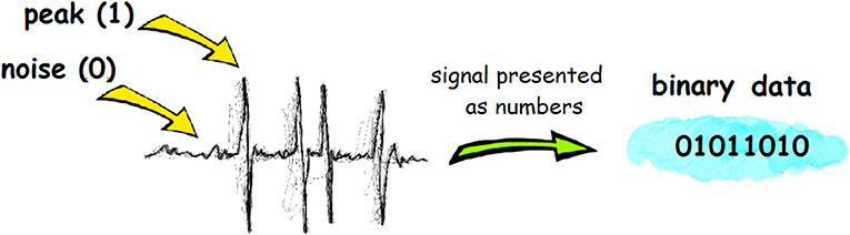 Figure 2 - Electrical impulses can be represented with binary language, as a series of 1 and 0s.