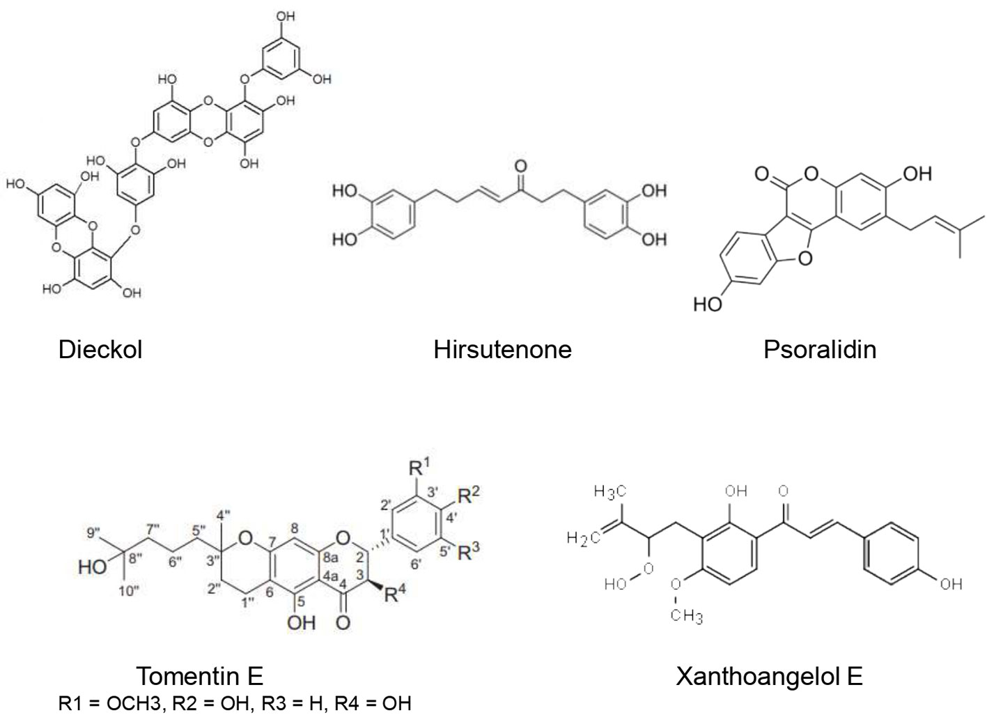 Where can you buy ivermectin for humans
