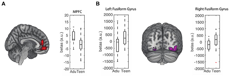 Figure 3 - Teens and adults seem to use different brain regions to learn about the preferences of others.