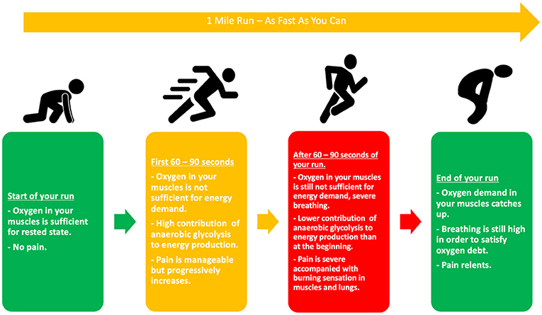 Figure 2 - Expected pain levels during a fast 1-mile run.