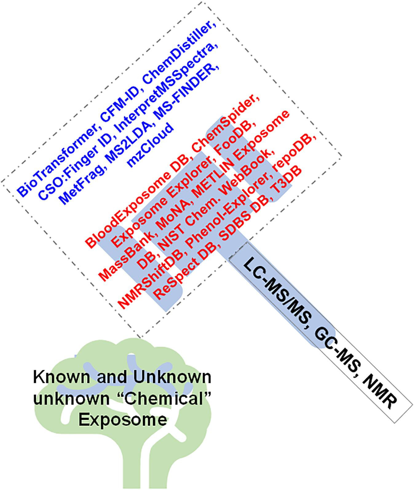 Frontiers   The Chemical Exposome of Human Aging   Genetics