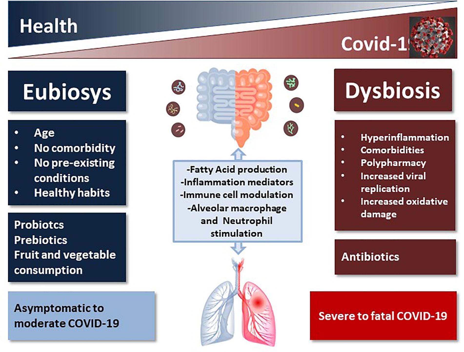 Dysbiosis lps - Dysbiosis lps. disbacterioza