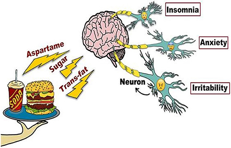 Figure 2 - Effects of unhealthy foods on the brain.