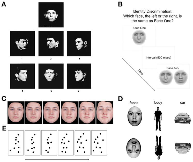 Facial Recognition Tests 120