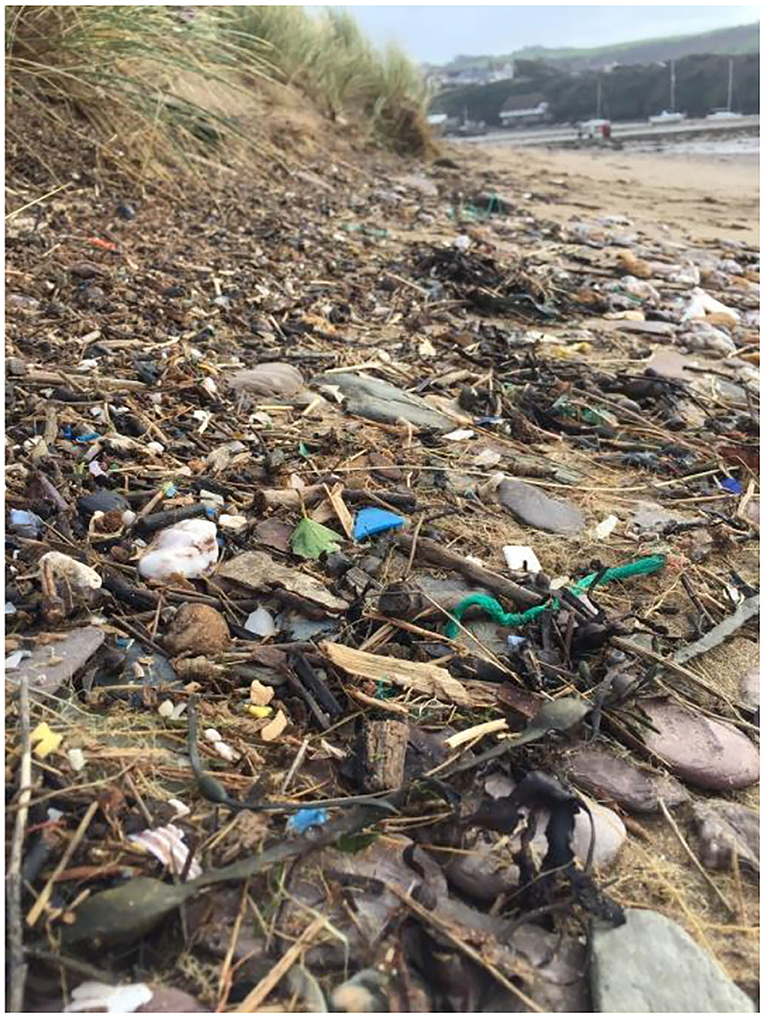 Figure 1 - Plastic litter on a beach.