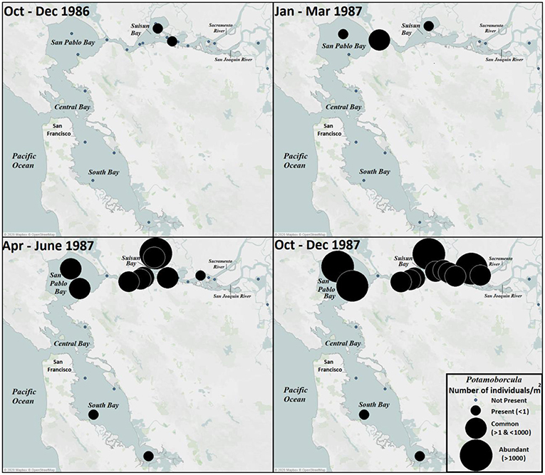 Figure 1 - Initial spread and distribution of Potamo in San Francisco Bay, from 1986 to 1987.