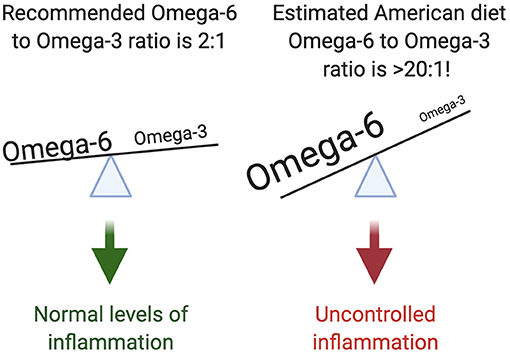 Figure 3 - Most Americans have a dramatic imbalance of omega-6s and omega-3s in their diets.