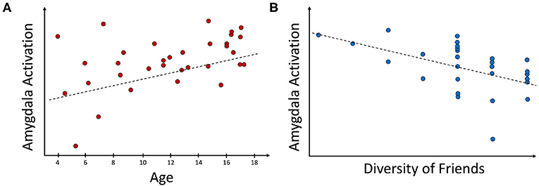 Figure 3 - (A) A scatterplot showing the relationship between age and amygdala response to pictures of Black people.