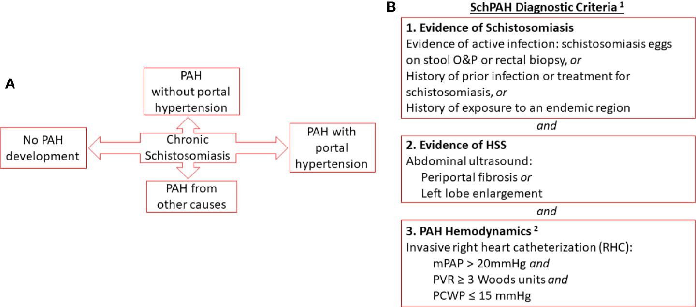 schistosomiasis history)