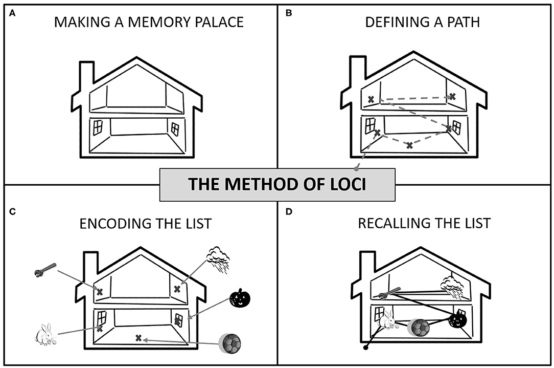 Frontiers   A Feasibility Study on the Use of the Method of Loci for  Improving Episodic Memory Performance in Schizophrenia and Non-clinical  Subjects   Psychology