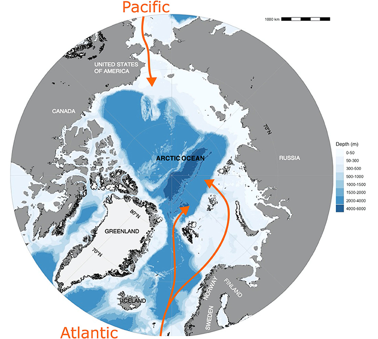 Figure 1 - Plastic litter is transported to the Arctic Ocean with water currents (orange) from the Atlantic and Pacific Oceans, and also with air currents.