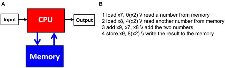איור 1 - (A) מבנה המחשב לפי ארכיטקטורת פון נוימן.