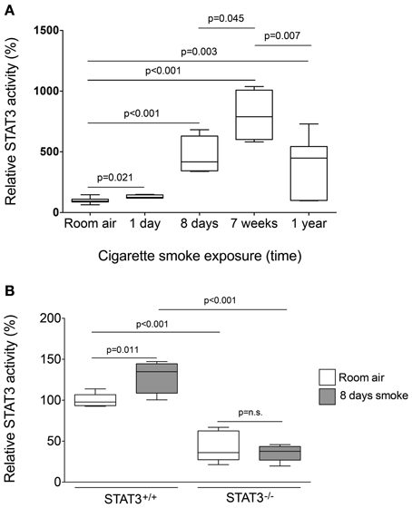 Frontiers | Cigarette Smoke Induction