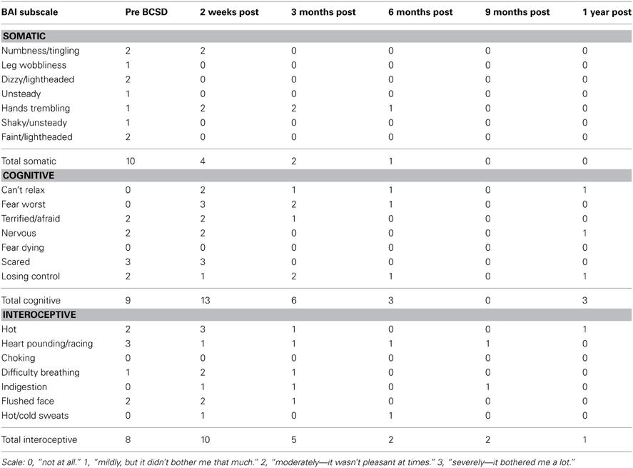 beck cognitive insight scale questionnaire pdf