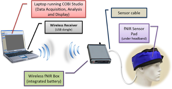 Brain Monitoring System : Frontiers continuous monitoring of brain dynamics with