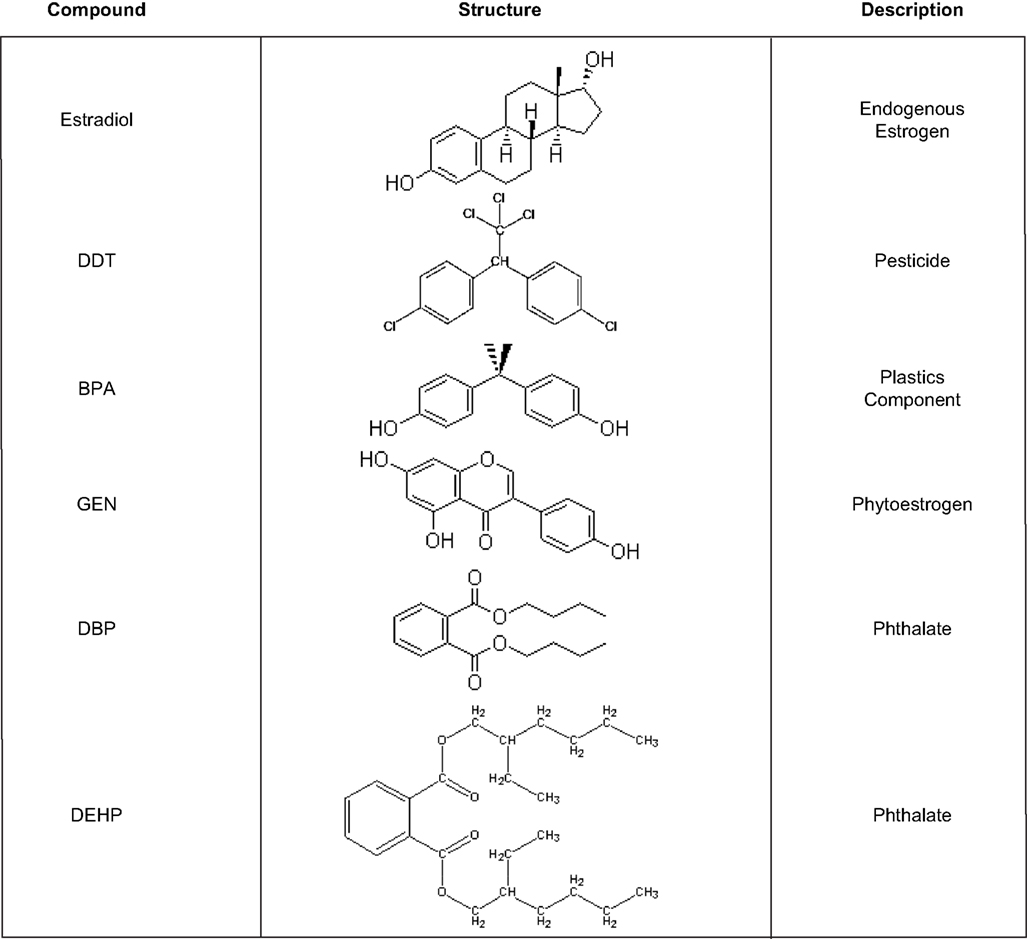 Nature Made Endocrine Disruptors