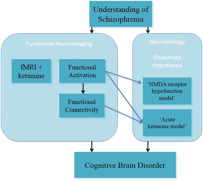 Schizophrenia positive and negative symptoms essay help