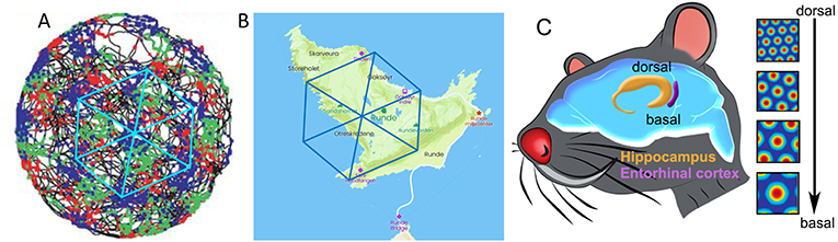 Figure 4 - Grid cells coordinates map the environment.