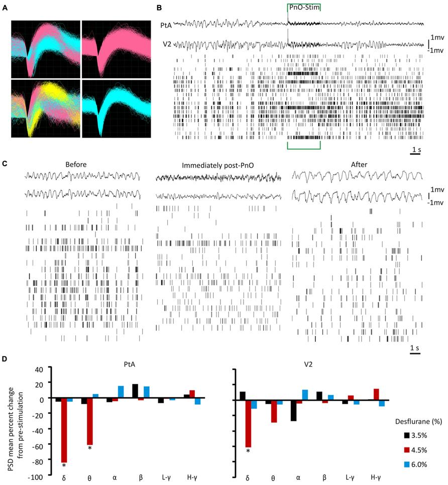 Frontiers Brainstem Stimulation Augments Information Integration Repeat Timer Circuit Diagram Electronic Circuits Pinterest