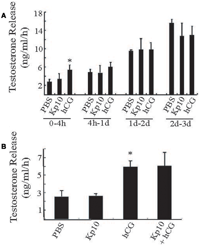 Frontiers | Does Kisspeptin Signaling have a Role in the