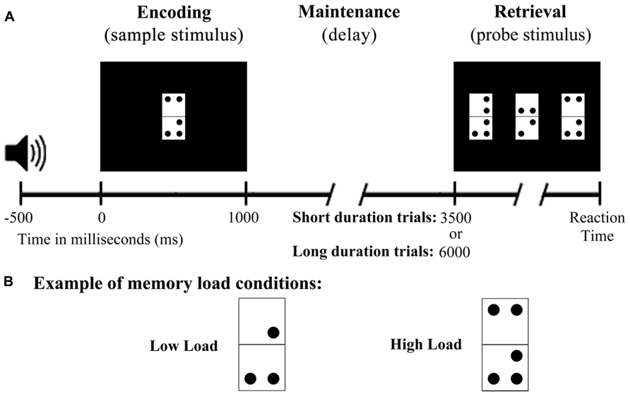 Frontiers Effects Of Load And Maintenance Duration On The Time