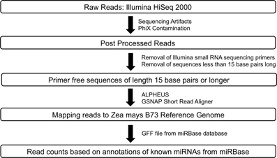 Frontiers | Sequencing-based large-scale genomics approaches