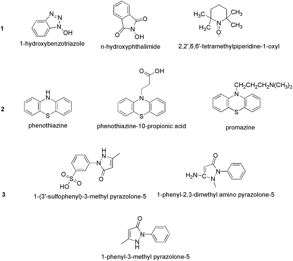 Thesis on laccase enzyme