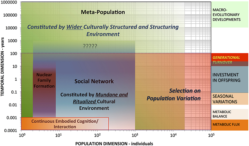 a description of humans shaping through interactions and experiences with other individuals Together, education, income, and occupation mutually influence and interact with one another over the life course to shape the health outcomes of individuals at multiple levels of social organization (the family, neighborhoods, and beyond.