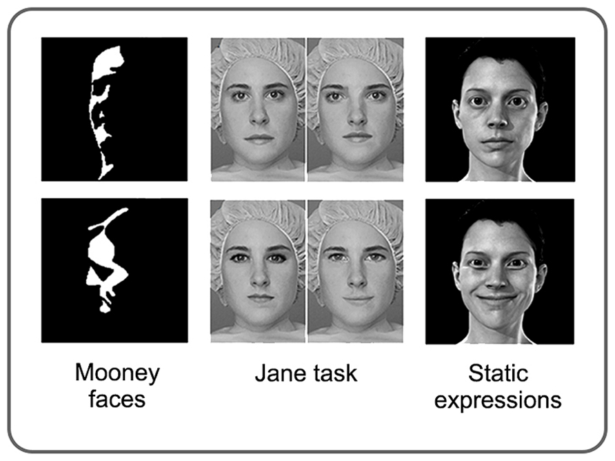 face files literature review of facial features psychology An external file that holds a picture, illustration, etc  afterwards, memory for the face parts from the study faces is tested in a two-alternative, forced choice recognition task  journal of experimental psychology: general.