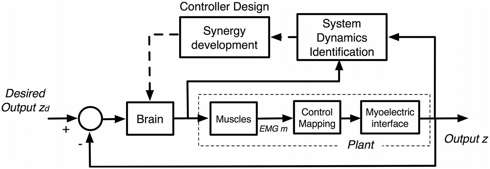 Frontiers Proceedings Of The First Workshop On Peripheral Machine Electromyogrambased Neural Network Control Transhumeral Prostheses