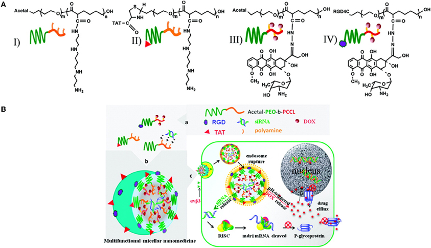 Frontiers Multifunctional Polymeric Micelles For