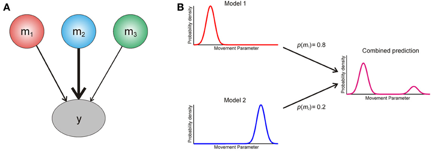 Frontiers | Model averaging, optimal inference, and habit formation