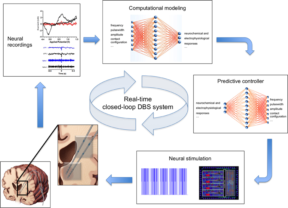 Single neuron dynamics models linking theory and experiment