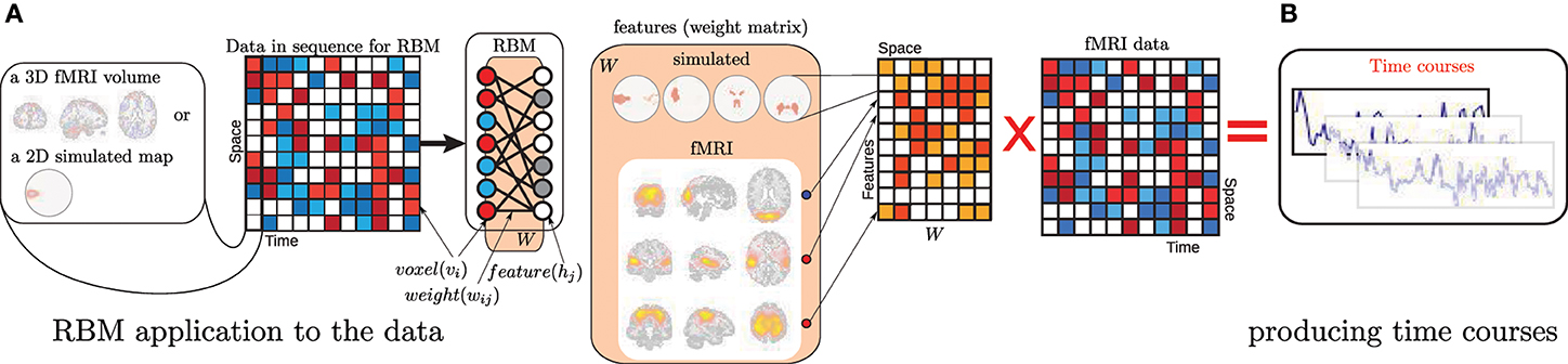 Frontiers   Deep learning for neuroimaging: a validation
