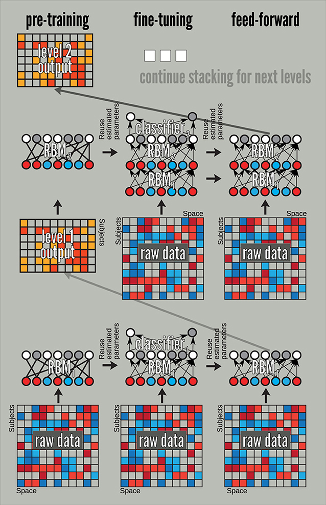 Frontiers | Deep learning for neuroimaging: a validation study