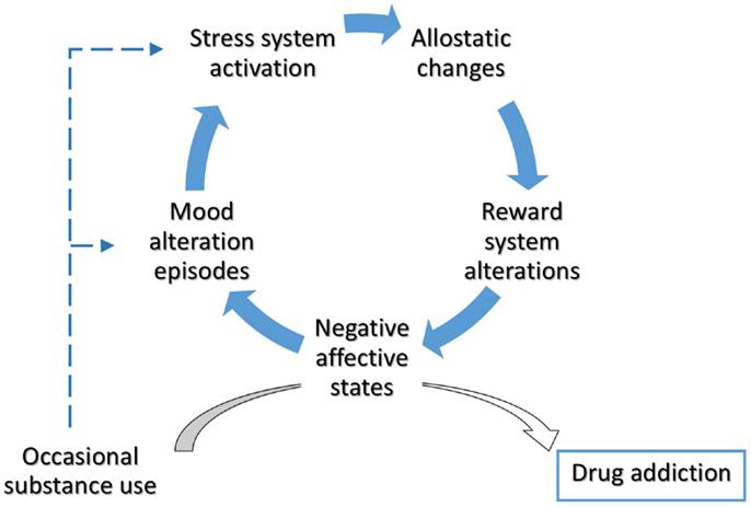 Frontiers Allostasis As A Conceptual Framework Linking Bipolar
