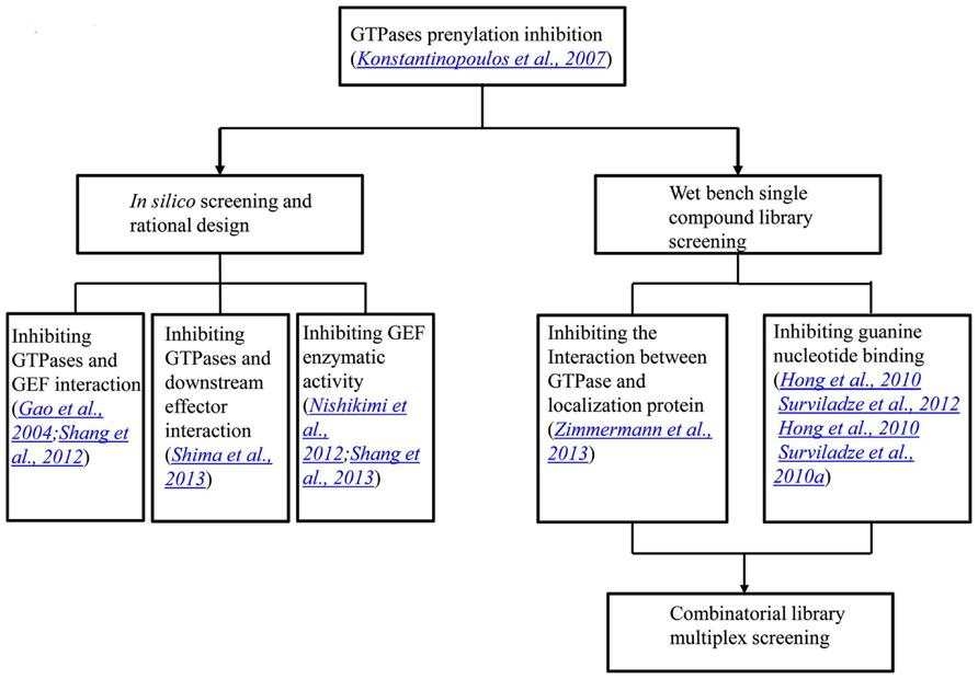 Frontiers | Targeting GTPases in Parkinson's disease