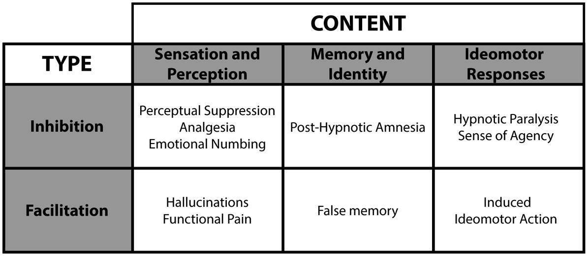 sensation along with comprehension content pieces 2010