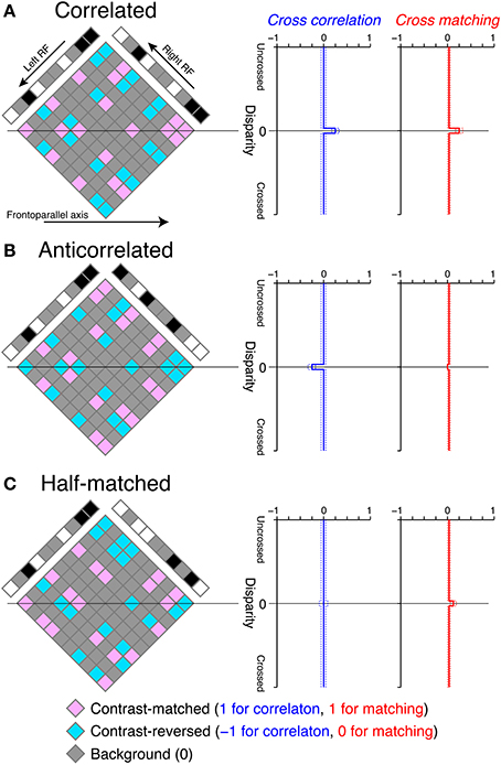 Frontiers | Cross-matching: a modified cross-correlation