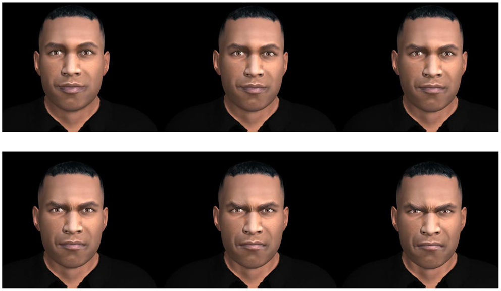 Frontiers   Virtual Faces Expressing Emotions: An Initial ...