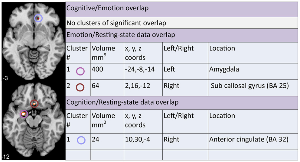 Frontiers | A Meta-Analysis of Changes in Brain Activity in