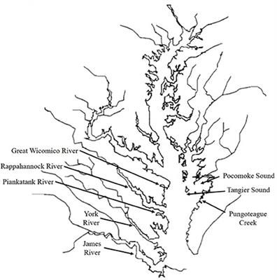 Frontiers History Of The Virginia Oyster Fishery Chesapeake Bay