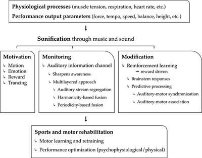 Frontiers 3mo A Model For Music Based Biofeedback Neuroscience